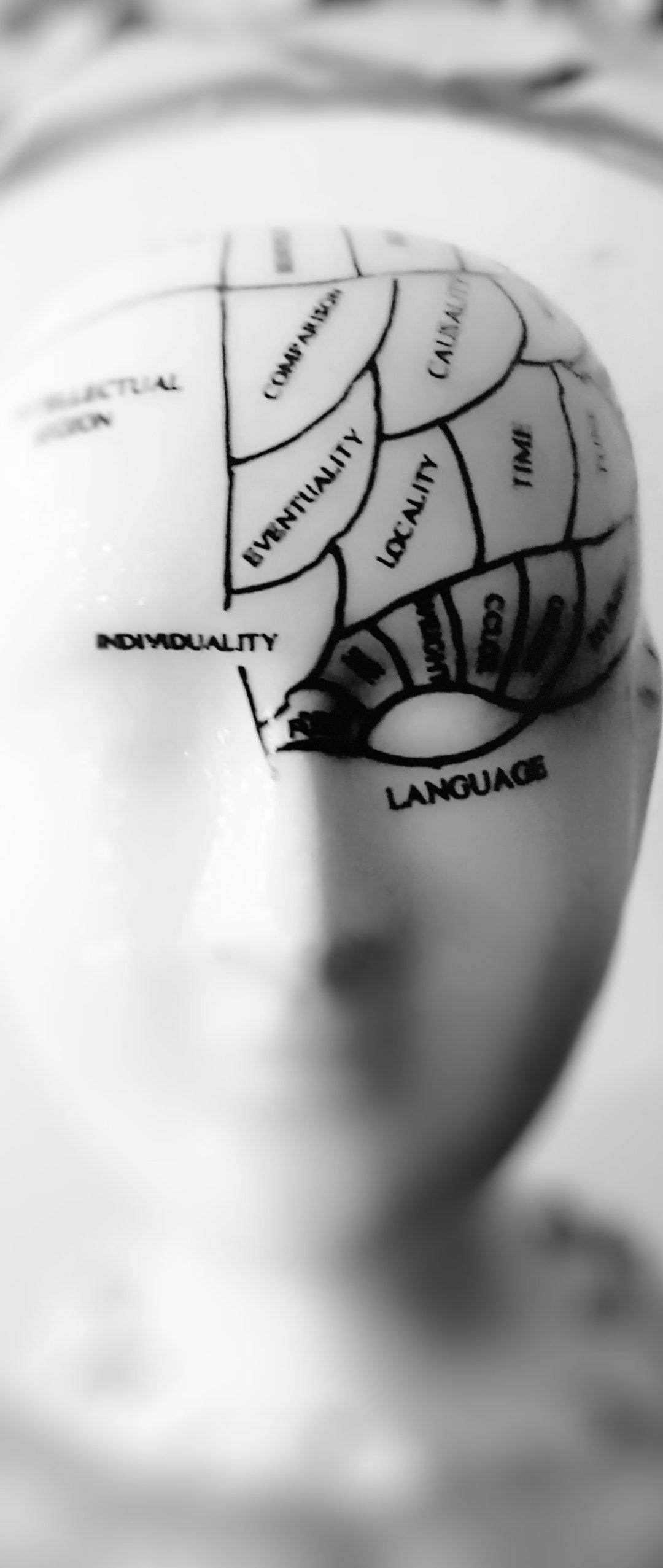Instructor Spotlight: Julienne King, Principles of Psychology